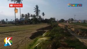 VIDEO: Pascabencana, Terjadi Perubahan Lahan Pertanian di Palu, Sigi dan Donggala