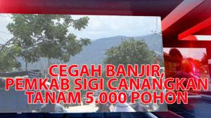 VIDEO : Cegah Banjir, Pemkab Sigi Galakkan Penanaman 5.000 Pohon Per Desa