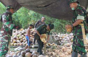 Tim Wasev TMMD Unjuk Kebolehan Mengupas Kelapa Saat Kunjungan ke Desa Ogoalas