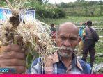 DTPH Sulteng Sebut Kurangnya Komoditas Bawang di Sulawesi Tengah