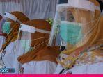 Pilkada di Tengah Pandemi, KPU Palu Pastikan Tak Ada Petugas yang Terpapar Covid-19