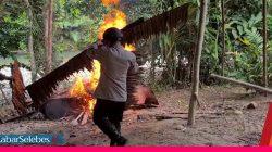 Video : Pergoki Sedang Produksi Miras, Pabrik Cap Tikus di Morowali Dibakar