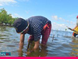 Geliat Peringatan Hari Lingkungan Hidup Sedunia di Pesisir Teluk Tomini Parigi Moutong