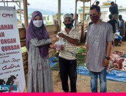 PT CPM Salurkan 11 Ekor Hewan Kurban bagi Warga di Areal Tambang