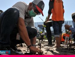 IMIP Dorong Rehabilitasi Mangrove Hadapi Global Climate Change