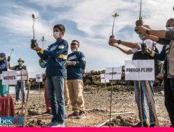 IMIP Tanam Puluhan Ribu Mangrove di Morowali, Bupati: Harus Dilakukan Juga di Wilayah Kepulauan