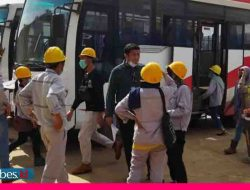 82 Tenaga Kerja Lokal Dipulangkan ke GNI dari VDNI Morosi